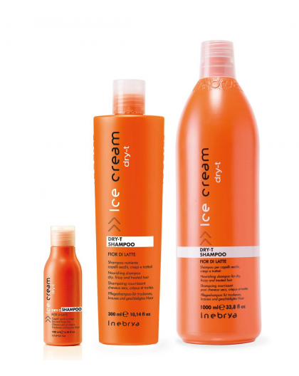 INEBRYA NEW SHAMPOO DRY-T 300 ML