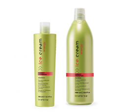 INEBRYA NEW SHAMPOO ENERGY 300 ML