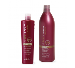 INEBRYA PRO COLOR SHAMPOO 300ML