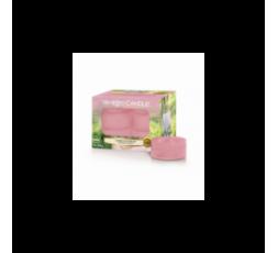 YANKEE CANDLE CLASSIC TEA LIGHTS SUNNY DAYDREAM CF12PZ