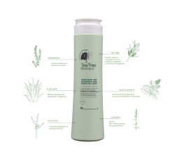 KHENZ SHAMPOO TEA TREE 300 ML