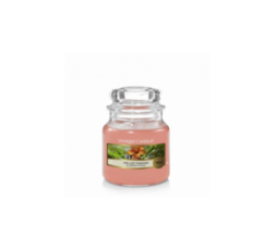 YANKEE CANDLE CLASSIC SMALL JAR THE LAST PARADISE