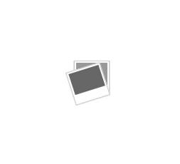 RO.IAL. SPATOLE LEGNO CF 100 PZ
